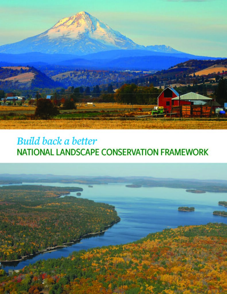 Build Back a Better National Landscape Conservation Framework. Back From the Forest? Read These Six Conservation Stories