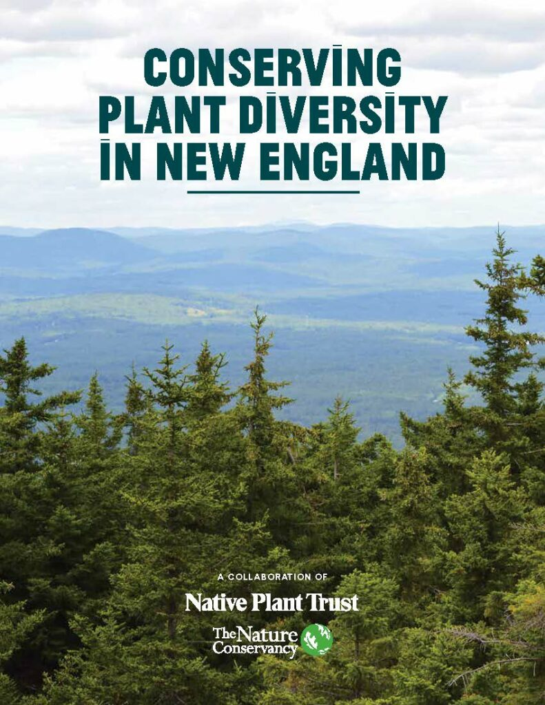 Conserving Plant Diversity in New England cover. Back From the Forest? Read These Six Conservation Stories